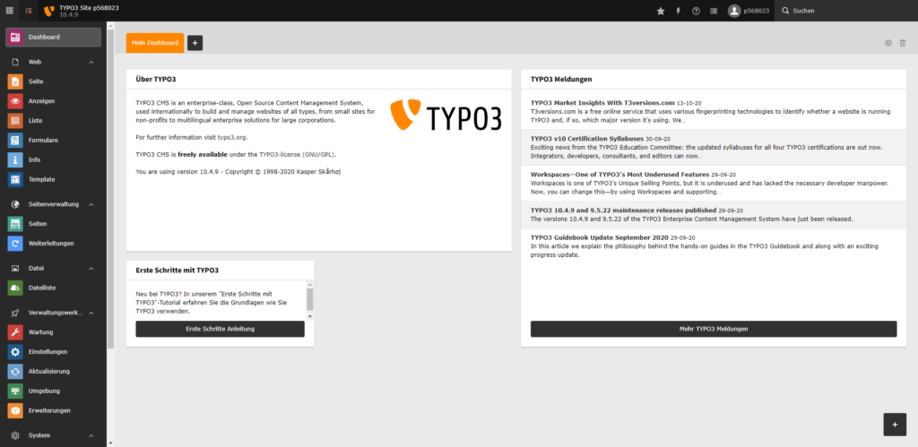 Blank Software - Screenshot TYPO3 Dashboard